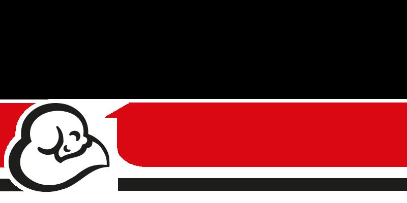 Logo termolan vecchio
